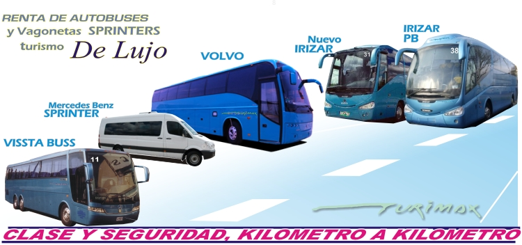 Renta De Autobuses Y Sprinters En Guadalajara